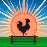 Coq sur le fond du lever de soleil illustration stock