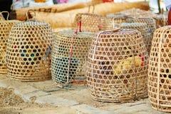 Coqs mis en cage sur un marché de Balinese Photo libre de droits