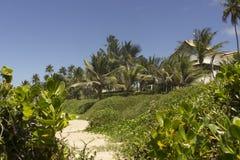 Coqueirinho海滩的,康德铅,巴西一个美好的地方 库存照片