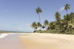 Coqueirinho海滩,康德铅,巴西 库存照片