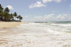 Coqueirinho海滩,康德铅,巴西 免版税库存照片