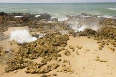 Coqueirinho海滩,康德铅,巴西 库存图片