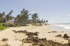 Coqueirinho beach, Conde PB, Brazil Royalty Free Stock Images