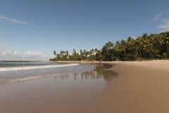 Coqueirinho beach, Conde PB, Brazil stock photography