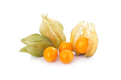 Coqueret comestible (physalis) d'isolement Images libres de droits