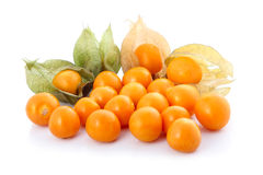 Coqueret comestible (physalis) d'isolement Photographie stock
