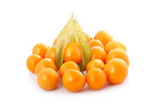 Coqueret comestible (physalis) d'isolement Image stock