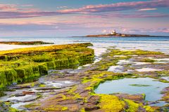 Coquet Island of Low Hauxley Coastline. Coquet Island just of the coastline at Low Hauxley in Northumberland is an RSPB reserve Royalty Free Stock Photo
