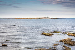 Coquet Island Nature Reserve Royalty Free Stock Photography