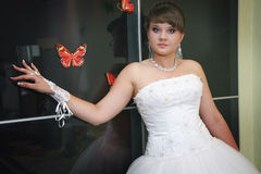 Coquettish bride posing Stock Photos