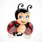 Coquettish cute ladybug flies Royalty Free Stock Images