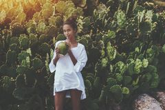 Sexy Afro girl drinking coco water from coconut near cactuses. Coquettish young cute Brazilian female in front of quickset hedge of cactuses with coconut is Royalty Free Stock Photography