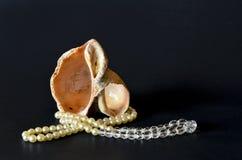 Coquillage avec les perles blanches sur le noir Photos libres de droits
