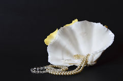 Coquillage avec les perles blanches sur le noir Photographie stock libre de droits