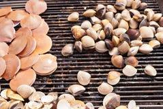 Coquillage grillé par feu sur le BBQ Photo stock