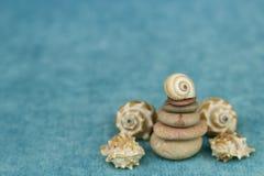Coquillage se trouvant sur une pile des pierres photos libres de droits