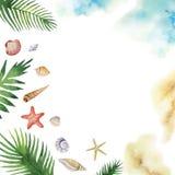 Coquillages colorés de vecteur d'aquarelle et feuilles tropicales d'isolement sur un fond blanc Image stock