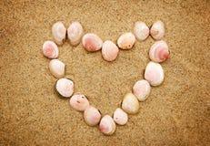 Coquillages en forme de coeur sur le sable Images libres de droits