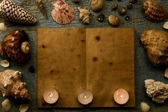 Coquillages et étoiles de mer sur le fond bleu criqué Les vides ou ouvrent un vieux livre Station thermale Photographie stock libre de droits