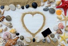 Coquillages et étoiles de mer sur un fond en bois blanc Image libre de droits