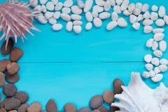 Coquillages et caillou sur le fond en bois Image libre de droits