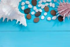 Coquillages et caillou sur le fond en bois Vue supérieure avec le spac de copie Image stock