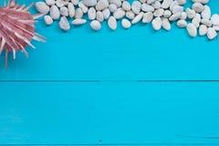 Coquillages et caillou sur le fond en bois Vue supérieure avec le spac de copie Photographie stock libre de droits