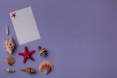 Coquillages et carte de papier sur le pourpre Photos libres de droits