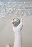 Coquillages et corail sur la main droite, cadeau de l'océan Photo libre de droits