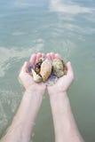 Coquillages et corail sur la main droite, cadeau de l'océan Photos libres de droits