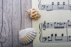 Coquillages et papier avec les notes musicales image libre de droits