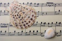 Coquillages et papier avec les notes musicales Photographie stock libre de droits