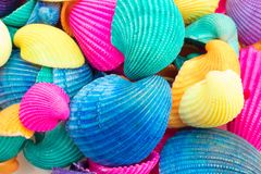 Coquillages multicolores vibrants images stock