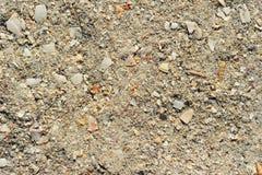 Coquillages réduits en fragments Photos stock
