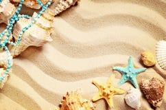 Coquillages sur une plage et un sable d'été comme fond Interpréteurs de commandes interactifs de mer photographie stock libre de droits