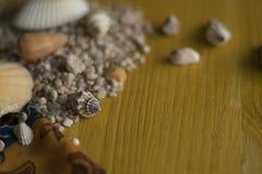 Coquillages sur une table en bois photos stock