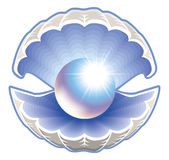 Shell avec l'illustration de perle illustration de vecteur
