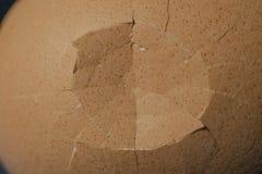Coquille cassée d'oeufs photos stock