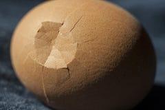 Coquille cassée d'oeufs photo stock