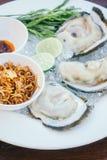 Coquille d'huître avec de la sauce épicée Photographie stock libre de droits