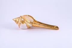 Coquille de conque sur le plateau d'or pour le mariage thaïlandais Images stock
