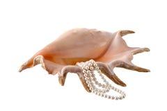 Coquille de coque avec des perles Photo libre de droits