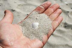 Coquille de mer dans des mains femelles Images libres de droits