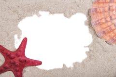 Coquille de mer et étoiles de mer rouges Photographie stock