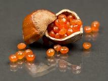 Coquille de noisette avec les gemmes facettées par cornaline Photos libres de droits