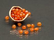 Coquille de noisette avec les gemmes facettées par cornaline Images libres de droits