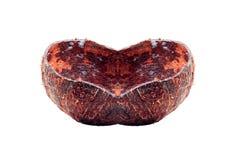 Coquille de noix de coco avec la forme d'amour Images stock
