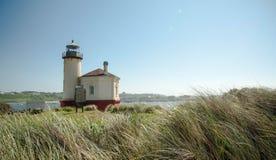 Coquille Rzeczna latarnia morska z kiwanie trawami Obrazy Stock