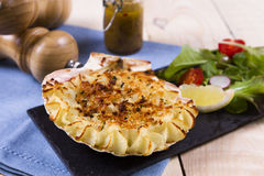 Coquille St Jaque Royalty Free Stock Photos