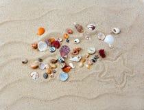 Coquilles colorées sur la plage avec l'étoile photographie stock libre de droits